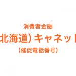 (北海道)キャネットの催促電話番号一覧